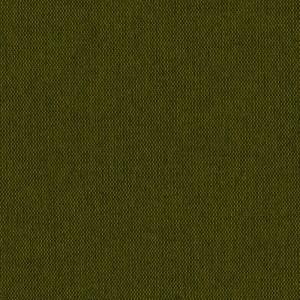 Рогожка Етна, зелений