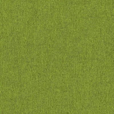Рогожка Етна, салатовий