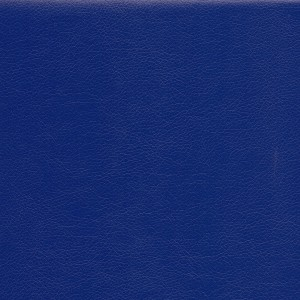Шкірозамінник Родео, синій